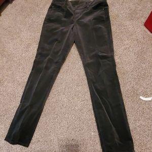 Ann Taylor Velvety pants size 10